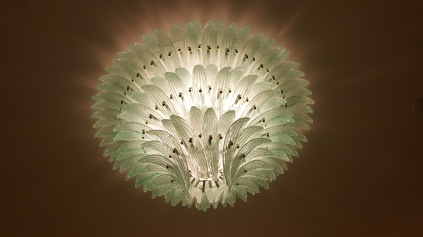Sea Anemone on the ceiling